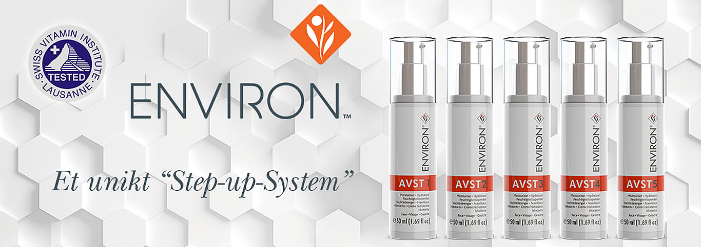 Environ Step-Up-System